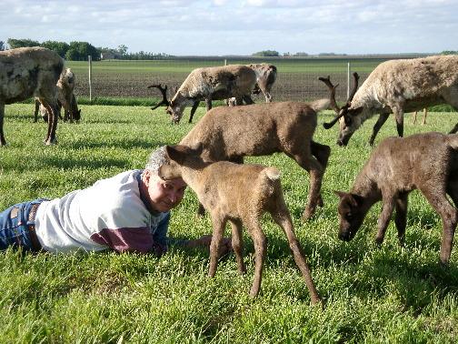 calves-checkin-on-daryl